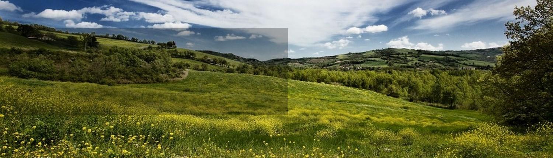 torriana-terreno-edificabile-edifica-vendesi