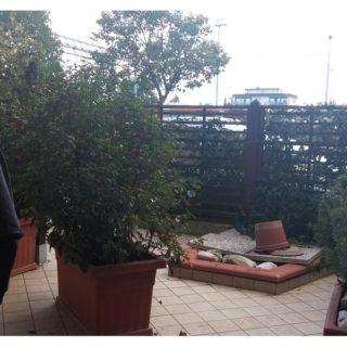 Appartamento con ingresso indipendente a Savignano