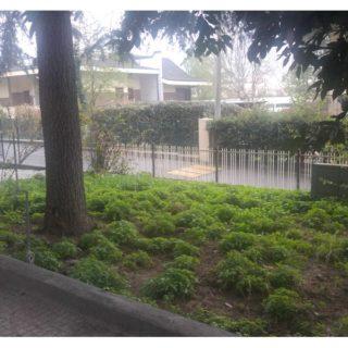 Appartamento piano terra con giardino a Pietracuta