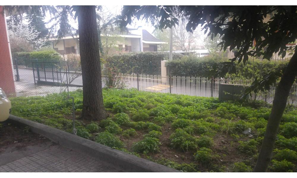 giardino-piano-terra-appartamento-tre-camere-edifica-agenzia-affitto-pietracuta-villa-verucchio-ristrutturato